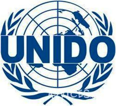 UNIDO--business-plan-Progressive_Management__38_056_797_01_44